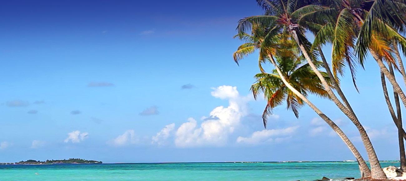 Official Vacation Packages Of
