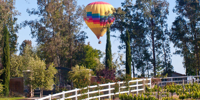 Best Places In Temecula To Live With Kids