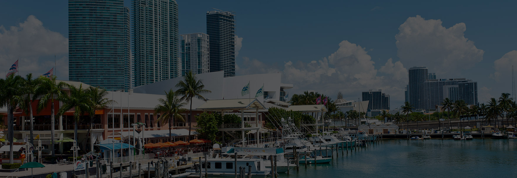Miami Vacation Packages (MF1) - Southwest Vacations