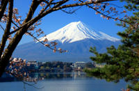 Mt Fuji Day Trip including Lake Ashi Sightseeing Cruise